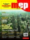 Magazine Towards English Proficiency (MEP Magazine)